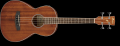 Ibanez PNB14E, Open Pore Natural